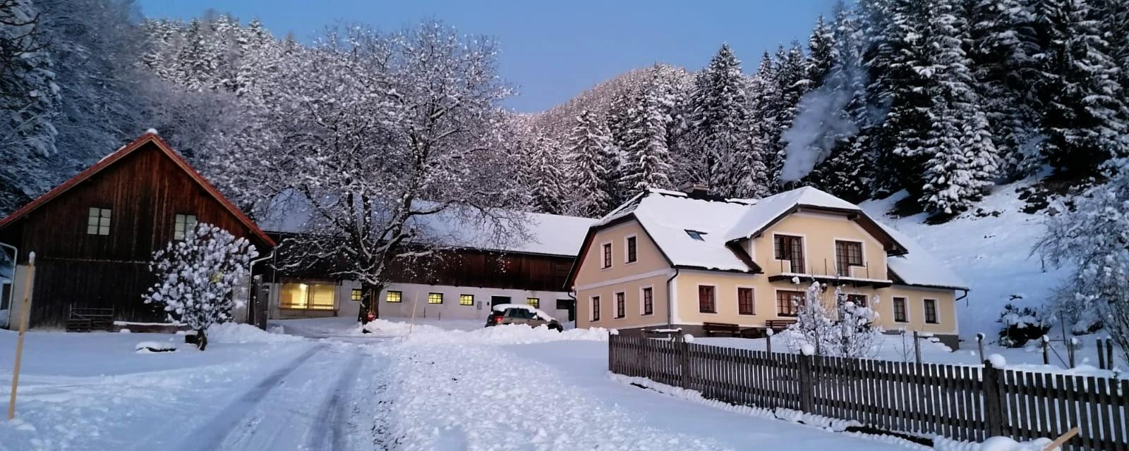 Biohof Scheikl im Winter
